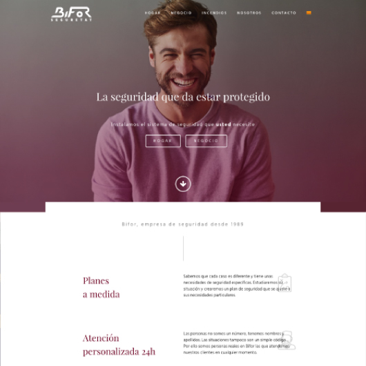 disseny web en wordpress exemple 1