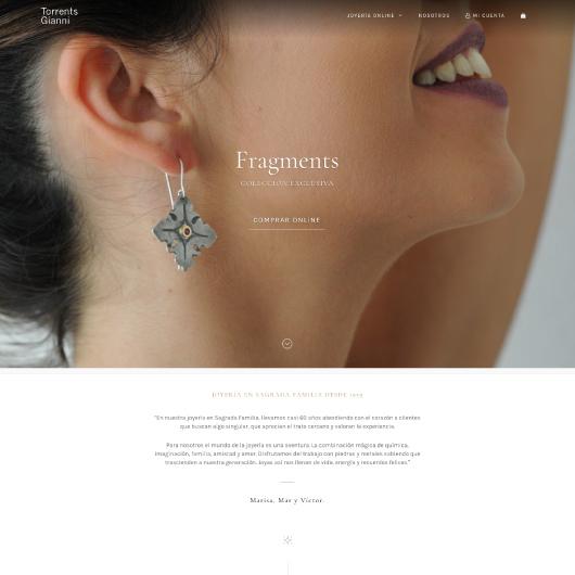 diseño web en wordpress ejemplo 3
