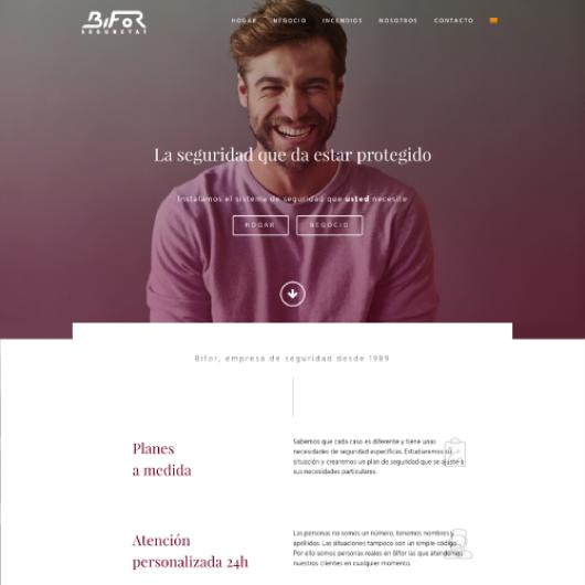 diseño wordpress web corporativa